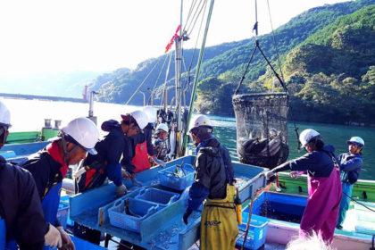 尾鷲漁業ナイト